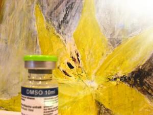 DocGermany - DMSO